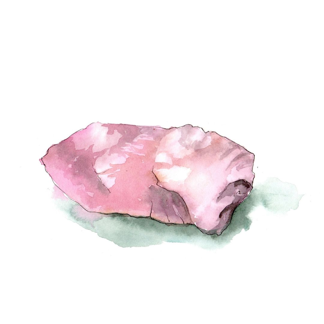 hand drawn illustration of rose quartz - star botanical ingredient in AMLY botanical skincare range