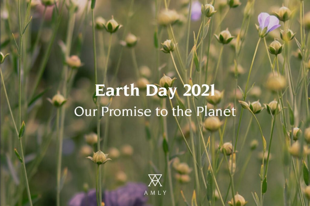 Image of a field with flowers and titled Earth Day 2021, our promise to the planet. At the bottom there is AMLY's logo.